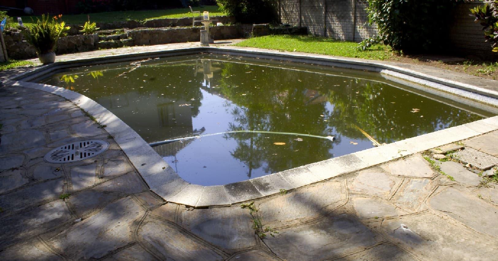 Como recueperar una piscina que el agua esté verde